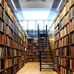 Библиотеки Высоцка